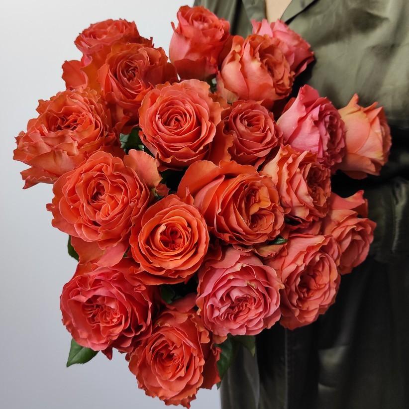 img 20201122 152036 - Роза цвета огня